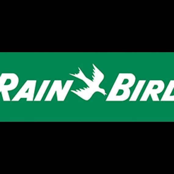 rain bird arrosage